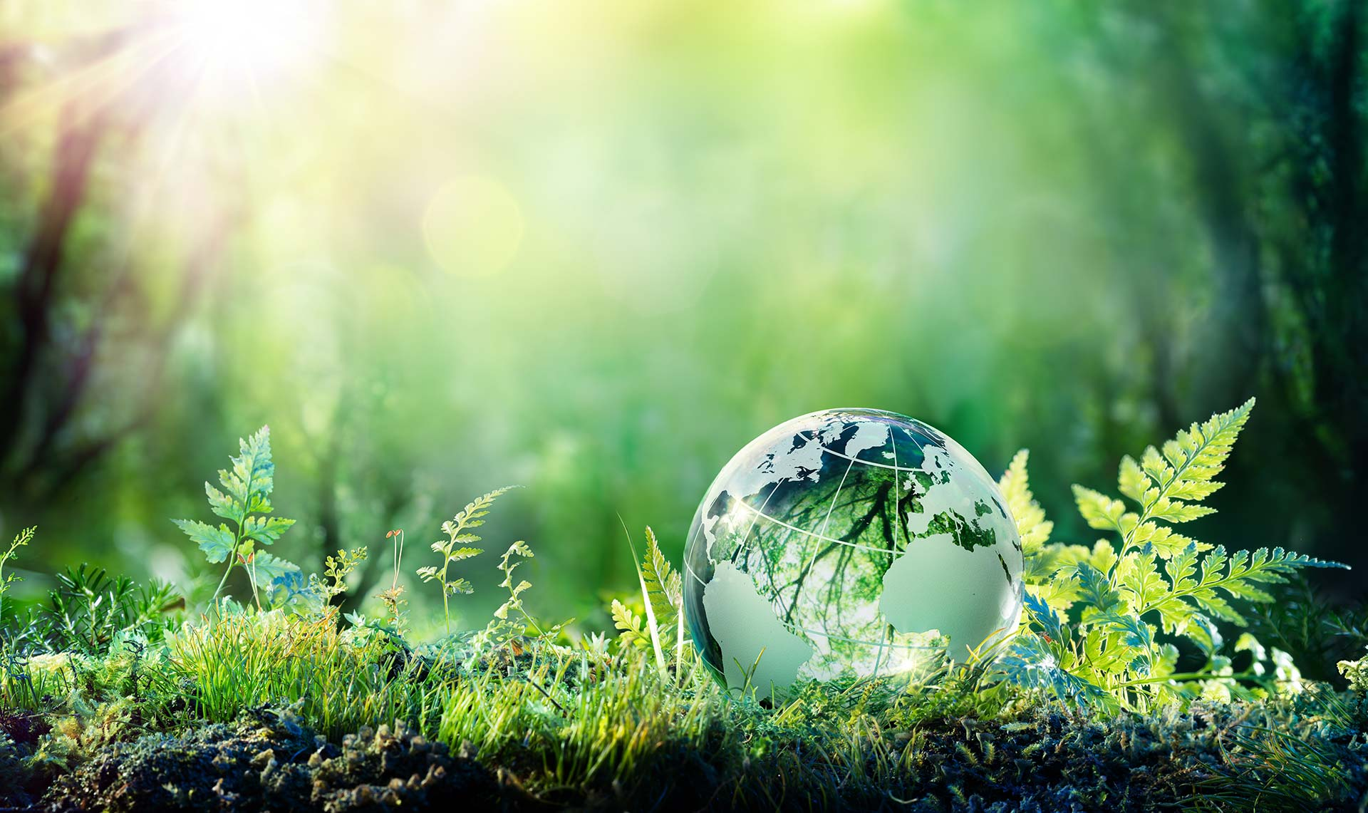 Sustainability is great for the world